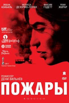 Пожары (2010)