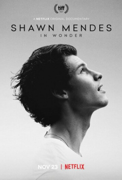 Шон Мендес: In Wonder (2020)